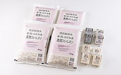 E111 特別栽培米岩船産コシヒカリ20kg・杵つき餅セット×年2回