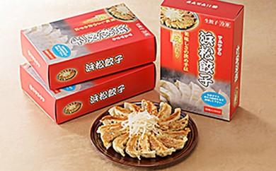 [№5786-1300]マルマツの浜松餃子 計90個