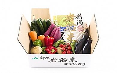 B119 岩船米コシヒカリと季節の野菜セット2