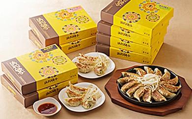 [№5786-1298]五味八珍 浜松餃子 3種計112個セット