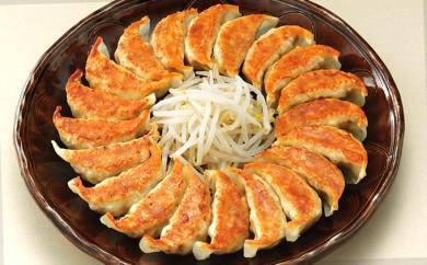 [№5786-1148]【遠鉄百貨店グルメセレクション】浜松餃子5種食べ比べセット