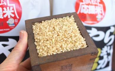 [№5786-1013]2018年新米 特別栽培米 浜松応援米やら米か 玄米20kg