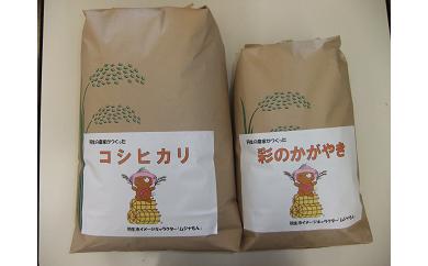 【令和元年産米】羽生の農家さんがつくったお米 15kg 食べ比べセット