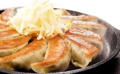 [№5786-1001]五味八珍 浜松餃子 84個