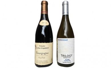[№5786-1455]浜松ワインセラーワインセット(赤白2本)