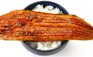 [№5941-0109]超特大&肉厚うなぎ蒲焼き300g前後×2尾入り