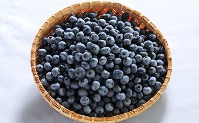 [№5845-1036]ブルーベリー(冷凍)果実