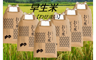 【H29年新米】越知町産自然いっぱいで育った【早生米】 30kg