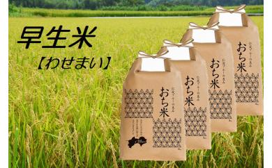 【H29年新米】越知町産自然いっぱいで育った【早生米】 20kg