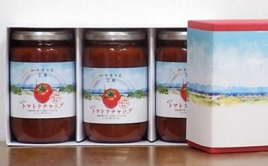 A047:おいしいトマトケチャップの詰合せ