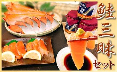 CD-18013 鮭三昧セット【刺身・焼き・フレーク】[381961]