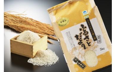 1791039 平成29年産 日本一おいしい米 金賞受賞した生産者の米 白米5㎏