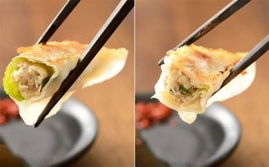 [№5786-1266]浜松発!いえやす自慢の浜松餃子 4種を楽しむバラエティーセット