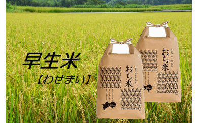 【H29年新米】越知町産自然いっぱいで育った【早生米】 10kg