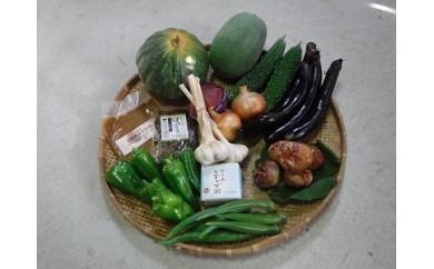 A-028.大根島野菜