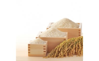 A1006‐00‐01 遊佐町産特別栽培米+庄内産つや姫セット17kg【6月発送】