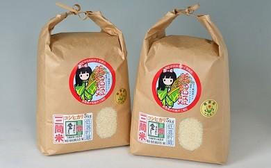 A02-401 三間米コシヒカリ美沼姫(特別栽培米) 10kg