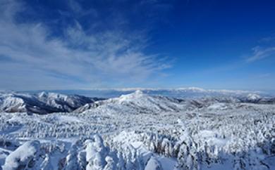 [№5658-0124]志賀高原スキー共通リフト引換券【スーパーパス6】