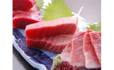 【E-007】魚市場厳選 本まぐろ三昧(1,500g)