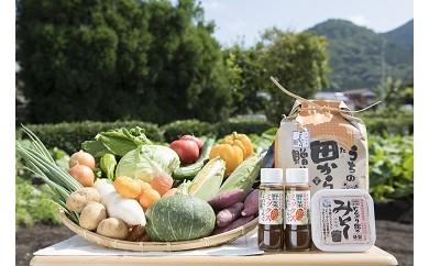 【E4】せいよ旬の野菜・果物・宇和米10kg・特製麦みそ・ドレッシング詰合せセット