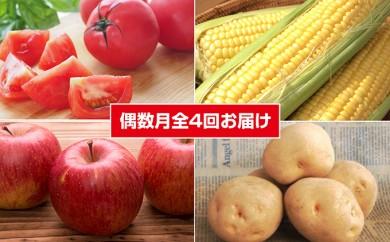 [№5641-0386]たきかわ厳選旬菜B<2018年配送>