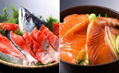 [№4630-0406]えりも産時鮭姿切身とお刺身(天然塩付)