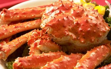 [№4630-0468]ボイルたらば蟹姿約1.8kg