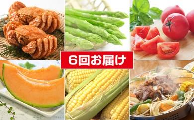 [№5641-0382]滝川市旬菜わくわくセットB<2018年配送>