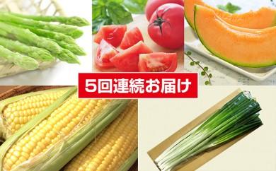 [№5641-0383]たきかわ夏の彩<2018年配送>