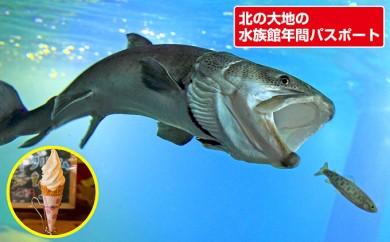 [№5742-0302]【北の大地の水族館】2名様年間パスポート(白花豆ソフトクリーム付)