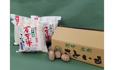 D25 万葉米(5㎏)×3・アルギット里芋L(5kg) :JA高岡