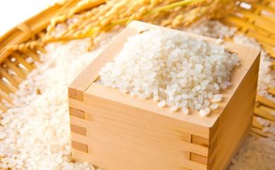 [№5819-0125]東吾妻町産 特別栽培ブランド米 さくや姫 5kg