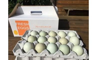 AG01_江原ファーム アローカナの青い卵(30個)