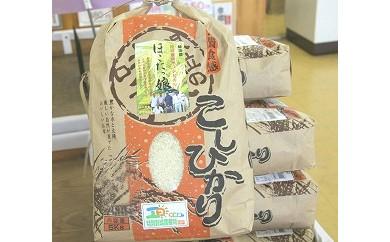 No.201 特別栽培米 ほこたっ娘コシヒカリ(10kg)