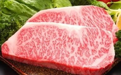 [№5532-0016]★熊本県産黒毛和牛★サーロインステーキ 2枚 肉のさかえ屋