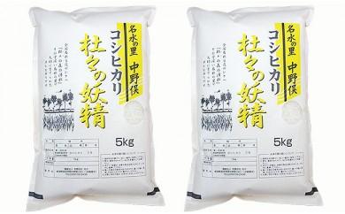 2-024 杜々の妖精コシヒカリセット(5kg×2袋)