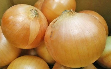 [№5642-0162]北海道足寄町産 特別栽培 玉ねぎ6kg