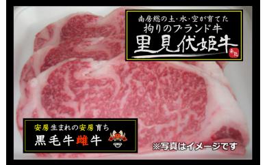 【A70】南房総の土・水・空が育てた「里見伏姫牛」(ステーキ用)