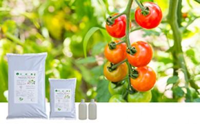 [№5642-0159]野菜作りと園芸に千の春・酵素液の酵素パワーお試しセット