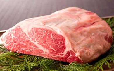 [№5532-0029]★熊本県産黒毛和牛★牛ヒレブロック 1kg 肉のさかえ屋