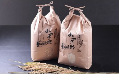 B544 【H29収穫米】みやき町産『さがびより(精米5kg・玄米5kg)』8年連続特A受賞