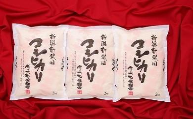 D08【30年産米!新米!】 特別栽培米コシヒカリ