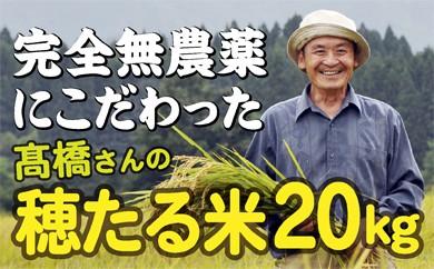 050-001 特別栽培米 穂たる米セット 20㎏