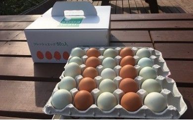 AG08_江原ファーム 地養卵&アローカナハーフセット(計50個)