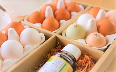 【A012】「畠中育雛場のたまご」卵いろいろ食べ比べセット