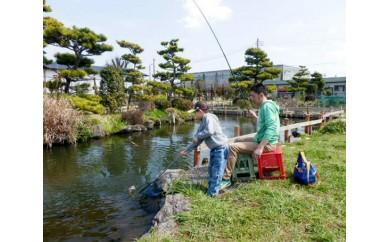 No.038 釣りセンター太公苑 魚釣り優待券