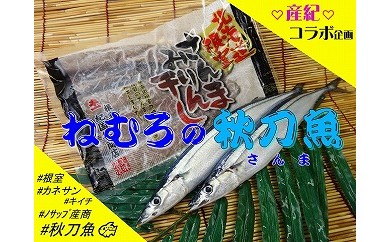 CA-03012 【北海道根室産】秋刀魚セット[385461]
