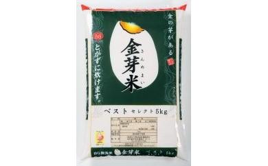 BP25 国内産 金芽米 10kg(5kg×2袋)【45pt】