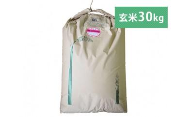 No.033 川崎産ひとめぼれ(玄米)