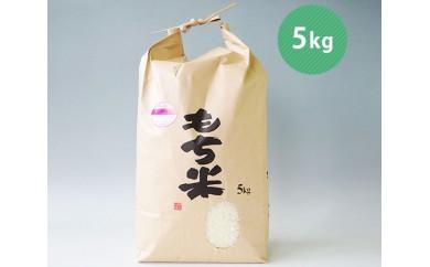 No.018 川崎産みやこがね(もち米)